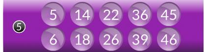 50 Ball Bingo Tombola